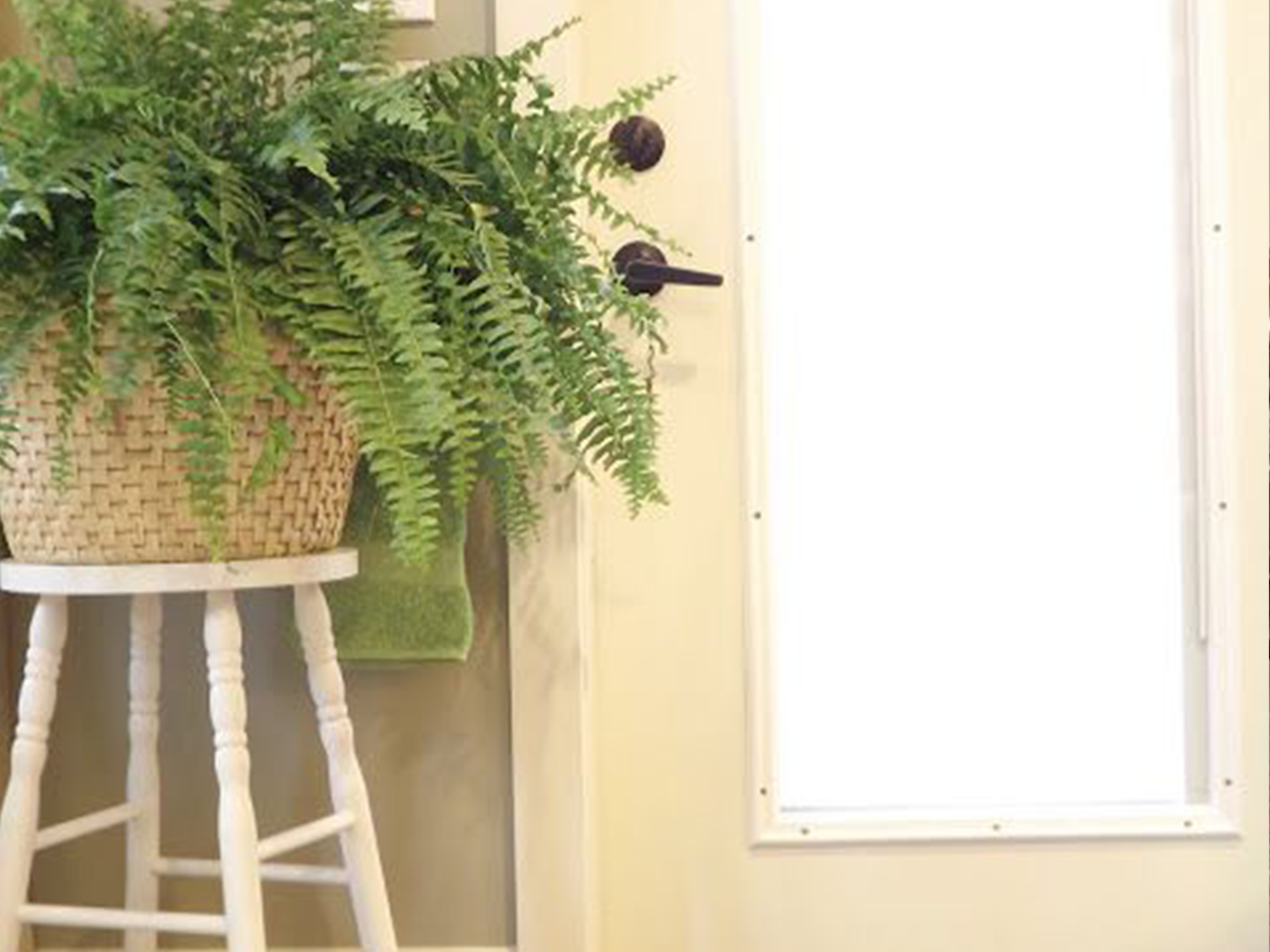 plant stand stool